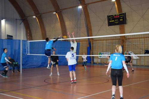 images035